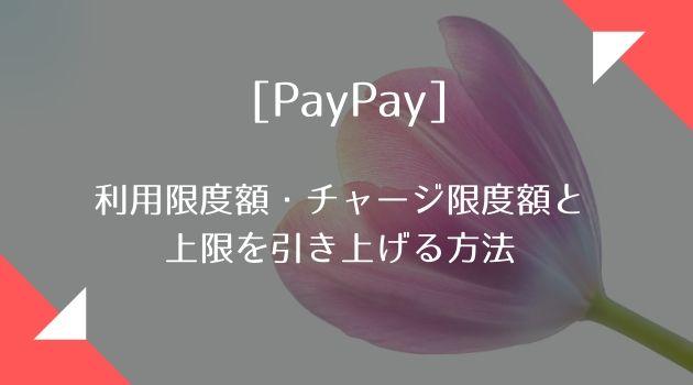 額 限度 paypay 利用